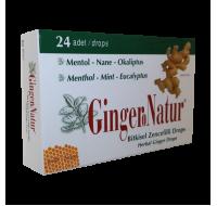 Meksmar Ginger Natur Bitkisel Nane ve Okaliptus Pastil 24 ad