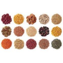 Bakliyat-Süper Besinler-Tahıllar